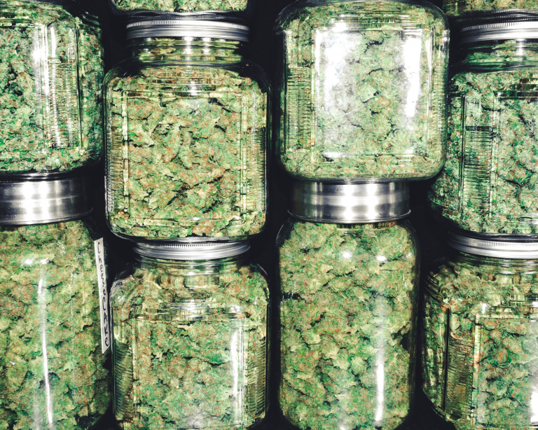 Read more about the article Sativa, Indica, and Hybrids-Understanding Marijuana Strains