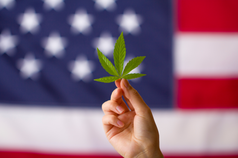 Federal Decriminalization of Cannabis Headed For A Vote