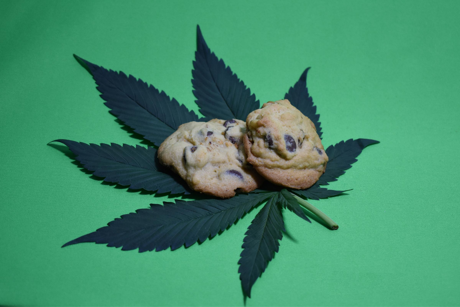 You are currently viewing The Wonderful World of Marijuana Edibles